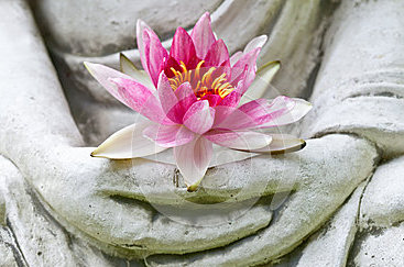 buddha-hands-holding-flower-29338192